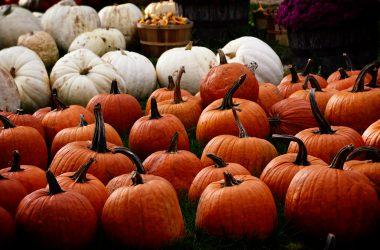 Ozdoby Halloween