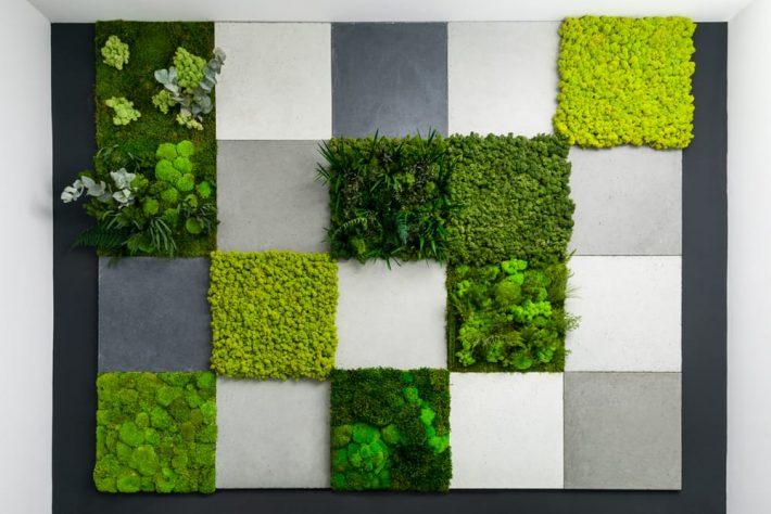 zielone ściany z mchu