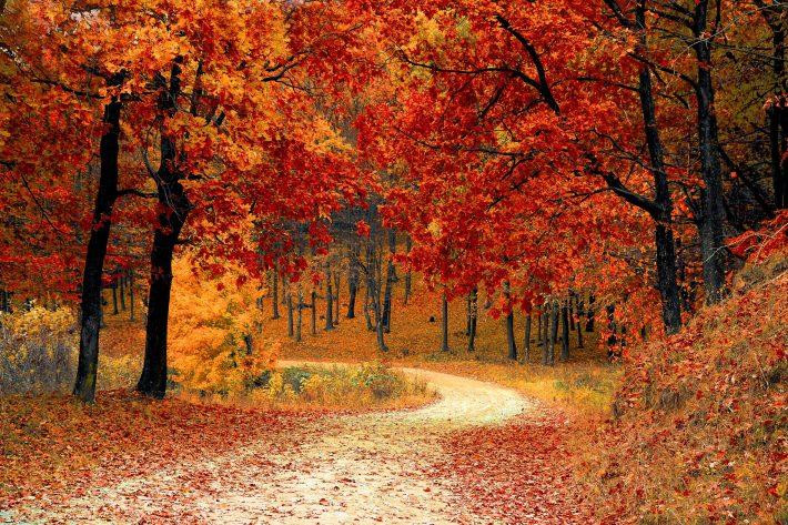 jesień - miejsce podróży